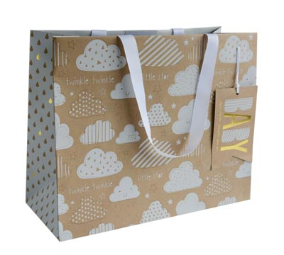 gift bag - large - cloud9