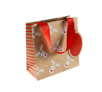gift bag - small - rudolph