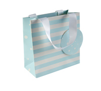 gift bag - small - spots n stripes - blue