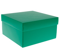gift box - cake - emerald (textured)