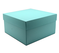 gift box - cake - mint (textured)