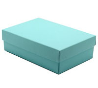 gift box - purse - mint (textured)