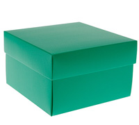 gift box - rice bowl - emerald (textured)