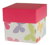 gift box - rice bowl - madame butterfly