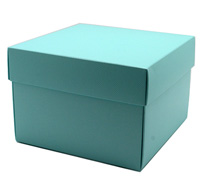 gift box - rice bowl - mint (textured)