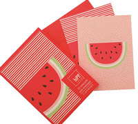 notecards - watermelon crush